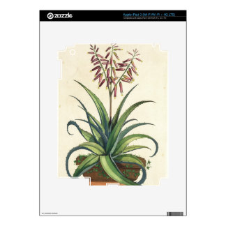 Aloe Vera Vulgaris, from 'Phytographia Curiosa', p iPad 3 Decal