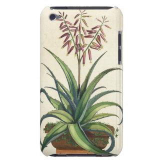 Aloe Vera Vulgaris, from 'Phytographia Curiosa', p iPod Touch Case