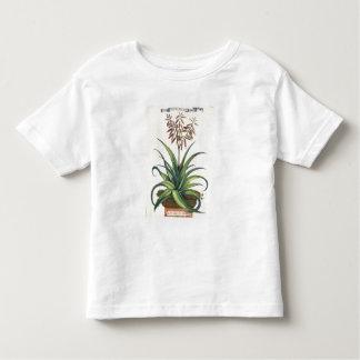 Aloe Vera Vulgaris, from 'Phytographia Curiosa', p Toddler T-shirt