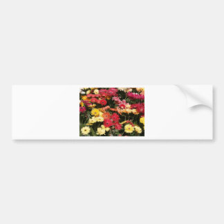 Aloha  Floral Luau Flowers Party Shower Office Art Bumper Sticker