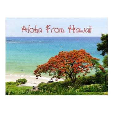 "Hawaiian Themed ""ALOHA FROM HAWAII""/BLUE PACIFIC AND RED POINCIANA POSTCARD"