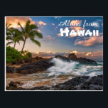 "Aloha from Hawaii Postcard<br><div class=""desc"">Aloha from Hawaii 