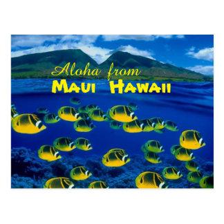 Aloha from Maui Hawaii Postcard