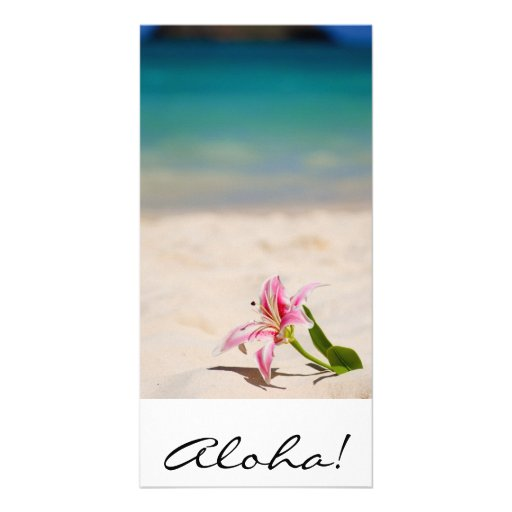 Aloha! Hawaii Picture Card