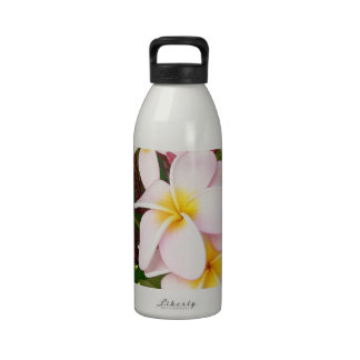 Aloha Hawaiian Frangipani Blossoms Bridal Shower Drinking Bottles