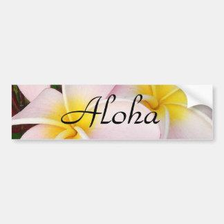 Aloha Hawaiian Frangipani Blossoms Plumerias Car Bumper Sticker