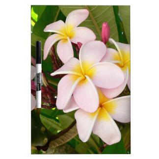 Aloha Hawaiian Frangipani Blossoms Plumerias Dry Erase Whiteboards