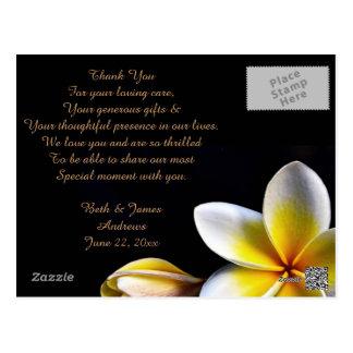 Aloha Hawaiian Frangipani Luau Thank You Cards Post Cards