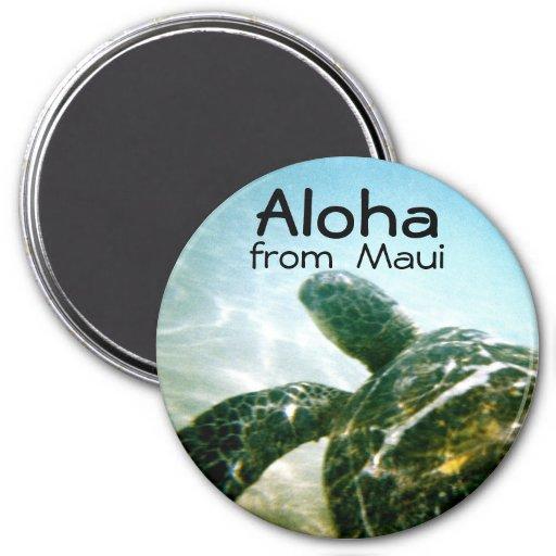 Aloha Maui Sea Turtle Refrigerator Magnets