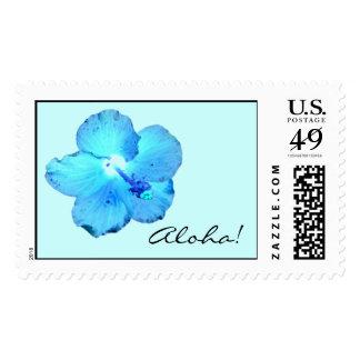 Aloha! Wild Blue Hibiscus ~ Stamps