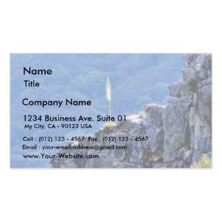 Alone Flower On Cliffs Business Card