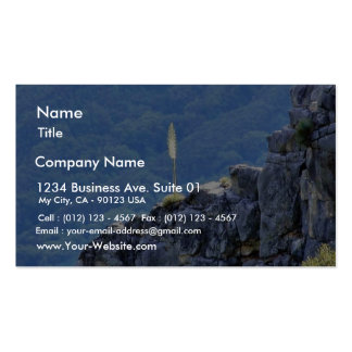Alone Flower On Cliffs Business Card Templates