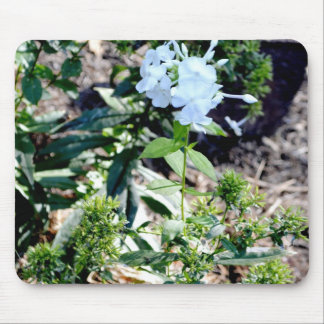 Alone in a Flower Patch Mouse Pad
