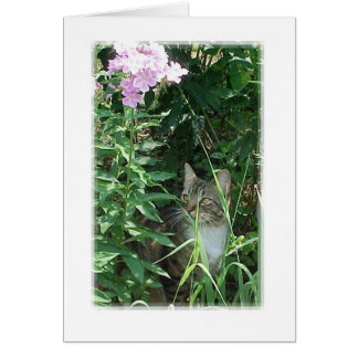 Alone in a Garden Greeting Card