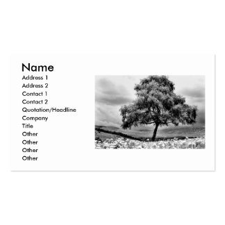 Alone, Name, Address 1, Address 2, Contact 1, C... Business Card Template
