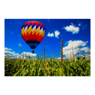 Alone over the cornfield Hot Air Balloons Posters