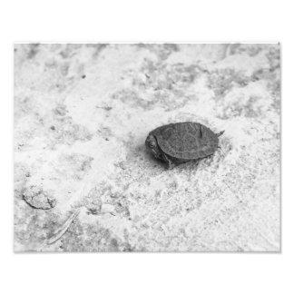 Alone Photo Print