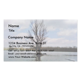 Alone Tree In Water Business Card Templates