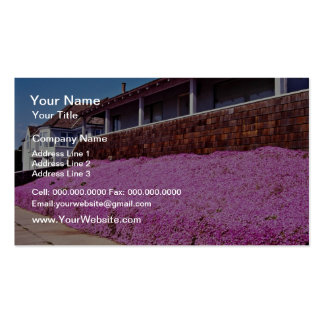 Along Cliff Road, Santa Cruz Double-Sided Standard Business Cards (Pack Of 100)