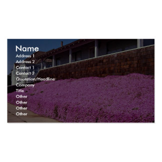 Along Cliff Road, Santa Cruz, California Double-Sided Standard Business Cards (Pack Of 100)