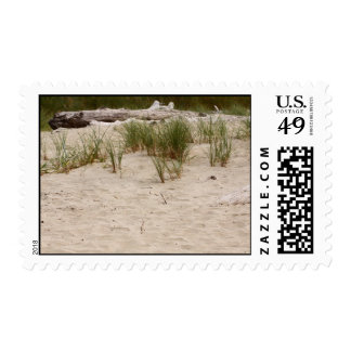 Along the beach stamp