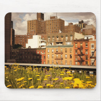 Along the High Line Mouse Pad