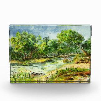 Along the Ocklawaha River Old Florida Watercolor Acrylic Award
