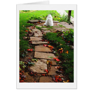 Along the Path Card