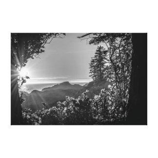 Along the Trail Canvas Print