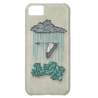 Along the Way iPhone 5C Cases