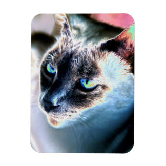 Aloof Siamese Cat Altered Flexible Magnet