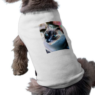 Aloof Siamese Cat Altered Pet Clothing