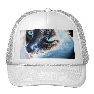 Aloof Siamese Cat Altered Trucker Hat