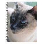 Aloof Siamese Cat Notebook