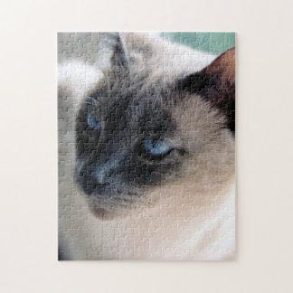 Aloof Siamese Cat Puzzle