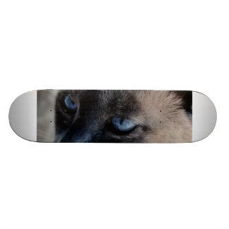 Aloof Siamese Cat Skateboard