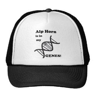 Alp Horn Is In My Genes Trucker Hat