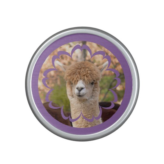 Alpaca Belle Bumpster Speaker