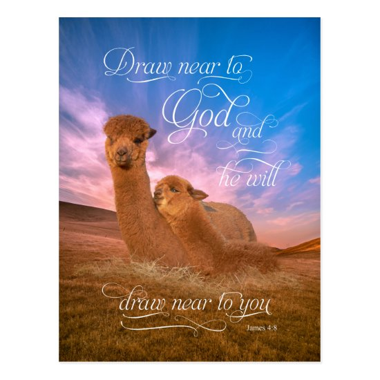 Alpaca Bible Verse Draw Near to God Postcards