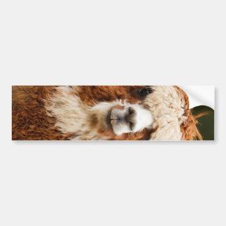 Alpaca Car Bumper Sticker