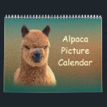 "Alpaca Calendar 2018<br><div class=""desc"">Our 2018 Alpaca Calendars are full of cute alpacas! Alpacas are different from other farm animals because they are always smiling and they look happy... they&#39;re sure to make you smile too! :) The alpacas really are adorable and our calendars are perfect gifts for any animal lover. The calendar is...</div>"