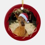 Alpaca Chirstmas Ornament