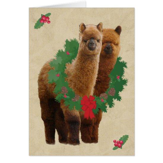 Alpaca Christmas Cards