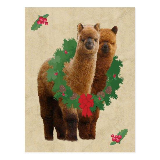 Alpaca Christmas Postcard