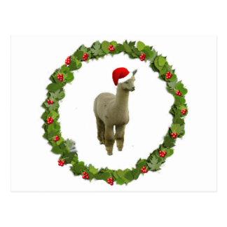 Alpaca Christmas Wreath Post Card