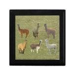 Alpaca Collage Jewelry Box