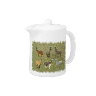 Alpaca Collage Teapot