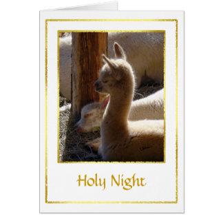 Alpaca Cria Christmas Card