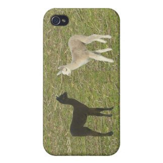 Alpaca Cria Covers For iPhone 4