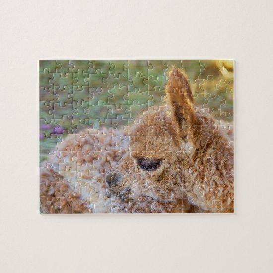 Alpaca Cria Puzzle